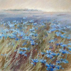 Васильковые поля Cornflower field 53×53. 2011