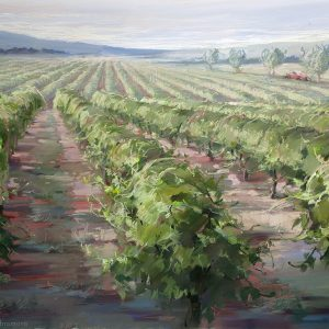 The Vineyards Of Provence 100×144. 2012