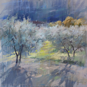 The sun and olive trees 2 70×70.